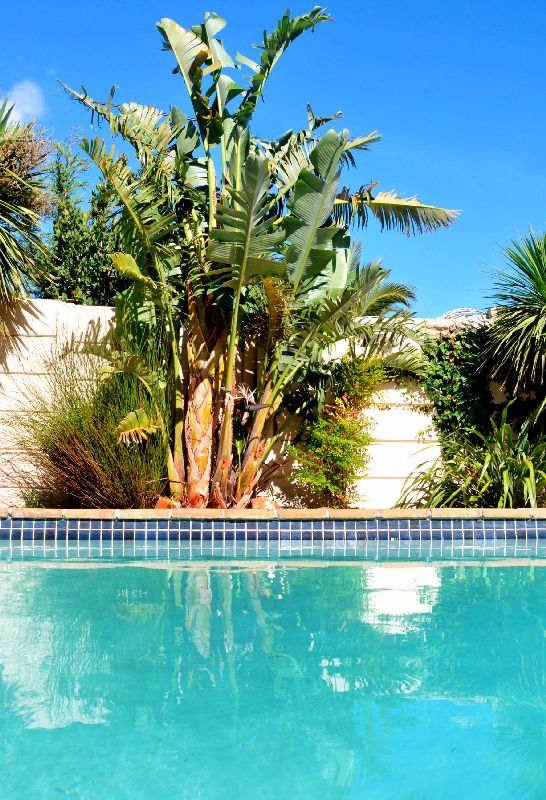 Lemontreecottage Pool